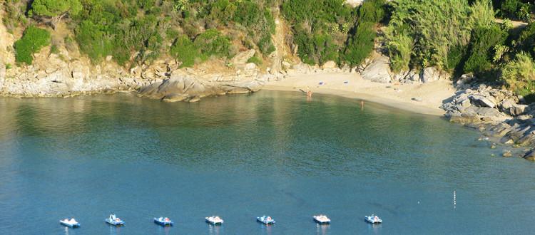 Cavoli Isola d'Elba